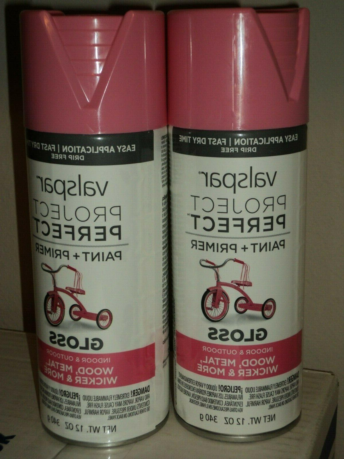 2 frosty berry spray paint 84221 pink